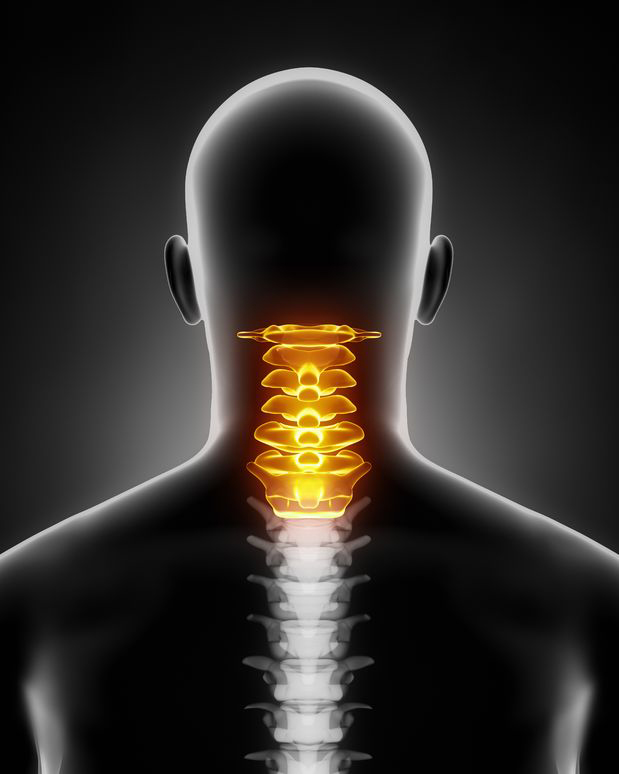 Basics of Chiropractic Care